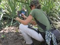 Pati from the project uses camera traps to gain more information on tapir ecology